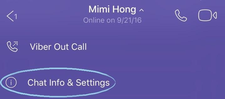 viber-chat-info2